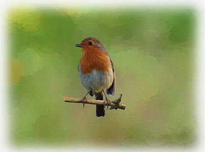 Digital Art - Robin-1 by Paul Gulliver