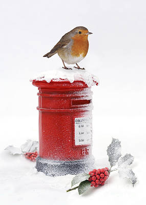 Photograph - Robin And Postbox by Warren Photographic