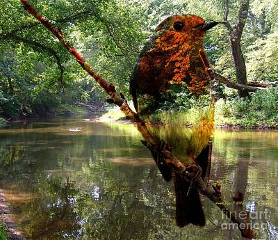 Photograph - Robin By The River by Annie Zeno
