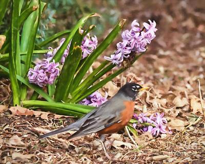 Photograph - Robin In The Pink by Kerri Farley
