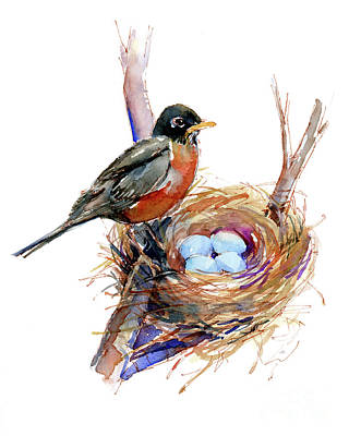 Robin Painting - Robin With Nest by John Keeling