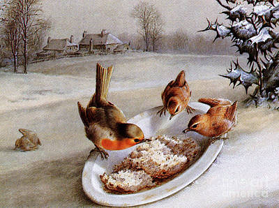 Wren Wall Art - Painting - Robins And Wrens  Winter Breakfast by Harry Bright