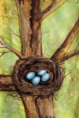 Robin's Nest Art Print by Carrie Jackson