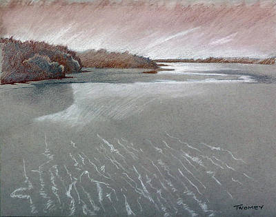 Painting - Robinson Preserve Sarasota by Catherine Twomey