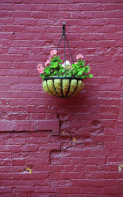 Art Print featuring the photograph Rochester, New York - Purple Wall by Frank Romeo