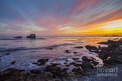 Photograph - Rock And Piedras Blancas Lighthouse by Sharon Foelz
