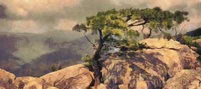 Landscape Oil Painting - Rock And Pine by Russ Harris