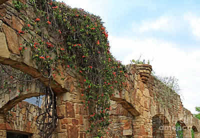 Stone Buildings Photograph - Rock Arches With Vines by Gayle Johnson