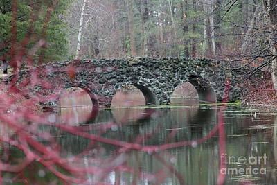 Photograph - Rock Bridge Reflection by Erick Schmidt
