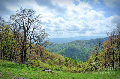 Photograph - Rock Castle Gorge On The Blue Ridge Parkway by Kerri Farley