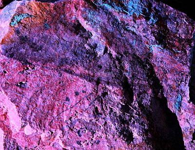 Photograph - Rock Colors 1 by M Diane Bonaparte