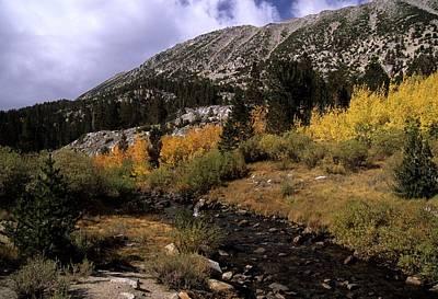 Rock Creek Fall Color Art Print by Don Kreuter