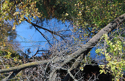 Keith Richards - Rock Creek From Dumbarton Bridge by Cora Wandel
