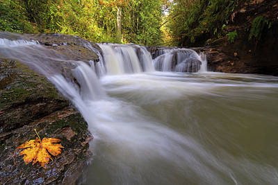 Photograph - Rock Creek In Happy Valley Oregon by David Gn