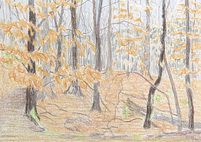 Bethany Lee Painting - Rock Creek Park II by Bethany Lee