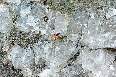 Photograph - Rock Crystal IIi by Debbie Oppermann