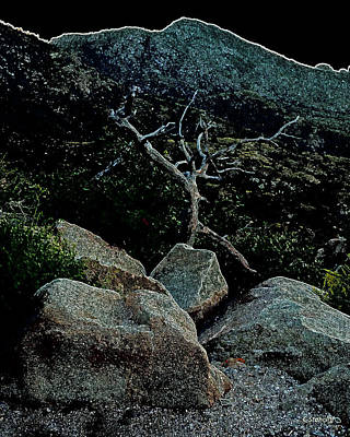 Photograph - Rock Dancer/ Catalina Mountains by Craig Stancliff