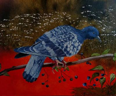Painting - Rock Dove by Joan Mansson