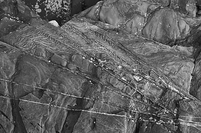 Photograph - Rock Fan by Bear R Humphreys
