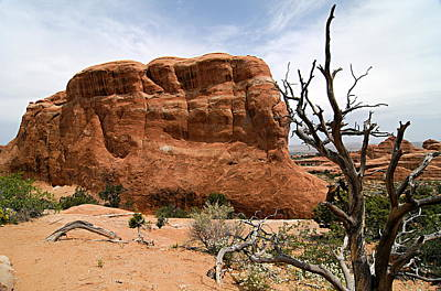 Photograph - Rock Fin -- Arches National Park by Larry Ricker