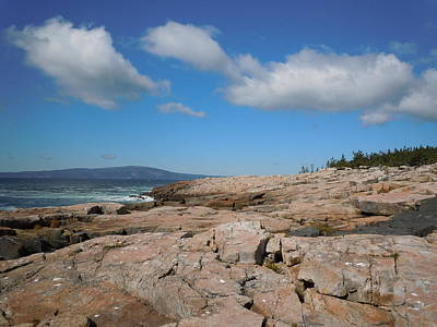 Rock Flow At Schoodic Point Art Print