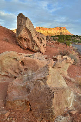 Photograph - Rock Garden - Capitol Reef by Ray Mathis