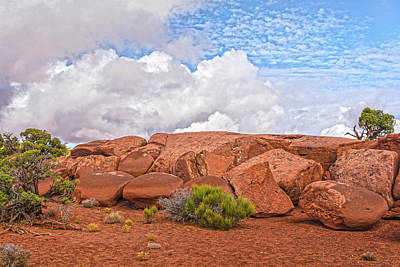 Photograph - Rock Garden In The Sky by Angelo Marcialis