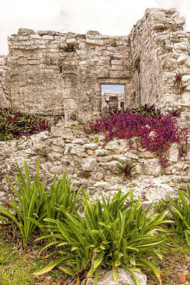 Photograph - Rock Garden by Wes Jimerson