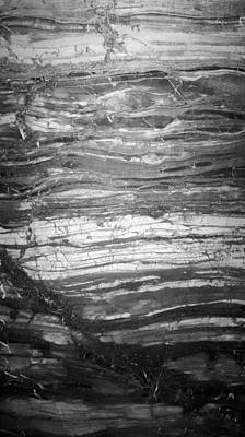 Photograph - Rock Lines B W by Rob Hans