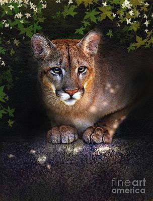 Puma Digital Art - Rock Lion by Robert Foster