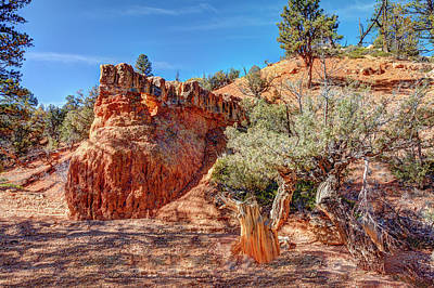 Photograph - Rock Monster by John M Bailey