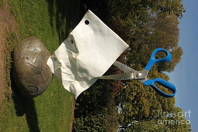 Photograph - Rock Paper Scissors At The Arboretum by Jennifer E Doll