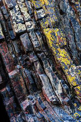 Photograph - Rock Pattern Sc02 by Werner Padarin