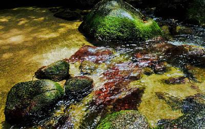 Photograph - Rock Pool - Mossman Gorge, Far Narth Queensland, Australia by Lexa Harpell