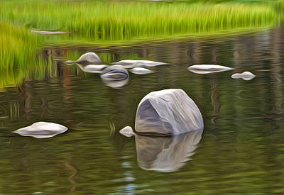 Photograph - Rock Reflections by James Steele