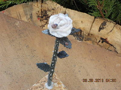 Hand Carved Sculpture - Rock Rose by Robert Davis