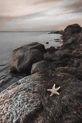 Photograph - Rock Star by Robin-Lee Vieira