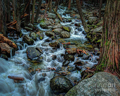 Photograph - Rock Strewn Bridalveil Creek In Yosemite by Terry Garvin