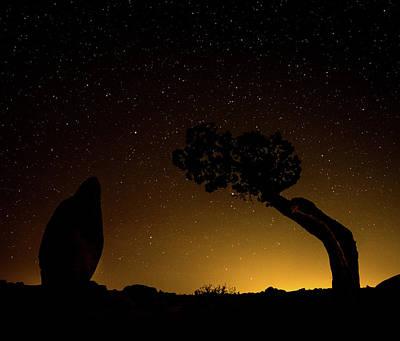Photograph - Rock, Tree, Friends by T Brian Jones