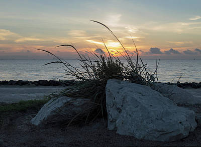 Photograph - Rock View by Leticia Latocki
