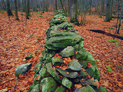 Photograph - Rock Wall Along The Appalachian Trail In New Jersey by Raymond Salani III
