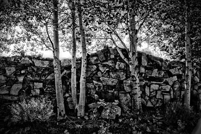 Photograph - Rock Wall by Bonnie Bruno