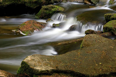 Rock Water And Moss Art Print by Timothy McIntyre