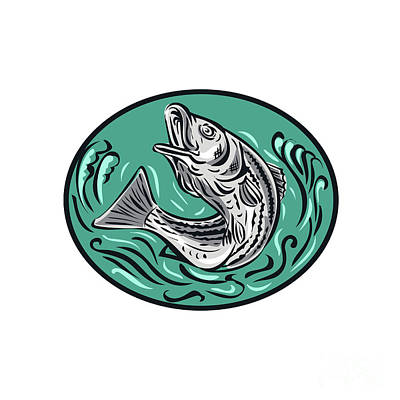 Striper Digital Art - Rockfish Jumping Color Oval Drawing by Aloysius Patrimonio
