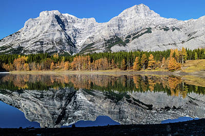 Photograph - Rockies From Wedge Pond Under Late Fall Colours, Spray Valley Pr by David Butler