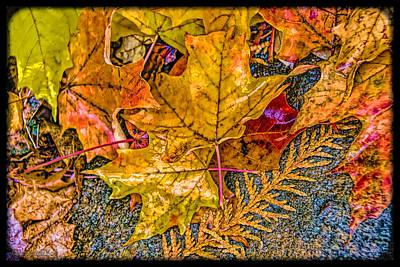 Photograph - Rockin Fall Leaves by LeeAnn McLaneGoetz McLaneGoetzStudioLLCcom