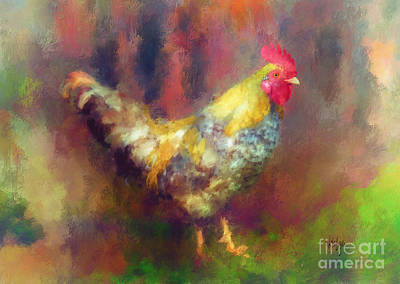 Chicken Digital Art - Rockin' Rooster by Lois Bryan