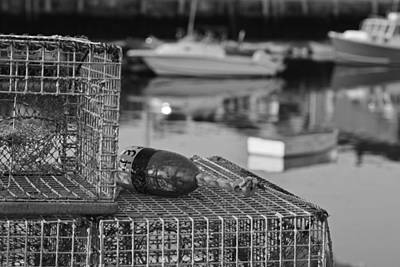 Photograph - Rockport Ma Lobster Traps Black And White by Toby McGuire