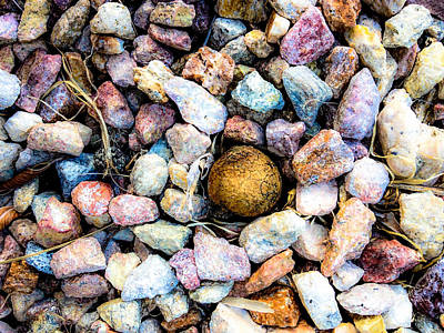 Photograph - Rocks And Citrus by Stan  Magnan