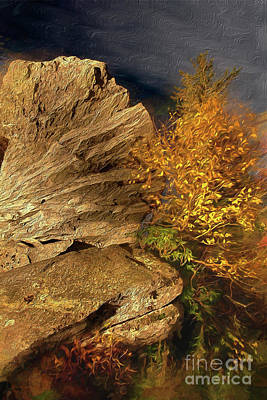 Painting - Rocks And Fall Colors At Night In The Blue Ridge Ap by Dan Carmichael